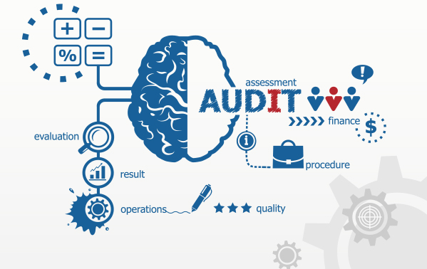 Baryons provides auditing portal solutions for auditors.