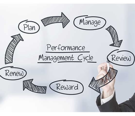 Baryons helps the manager to review, edit and add goals through the performance cycle for appraisals.